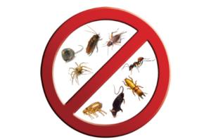 pest-homepage